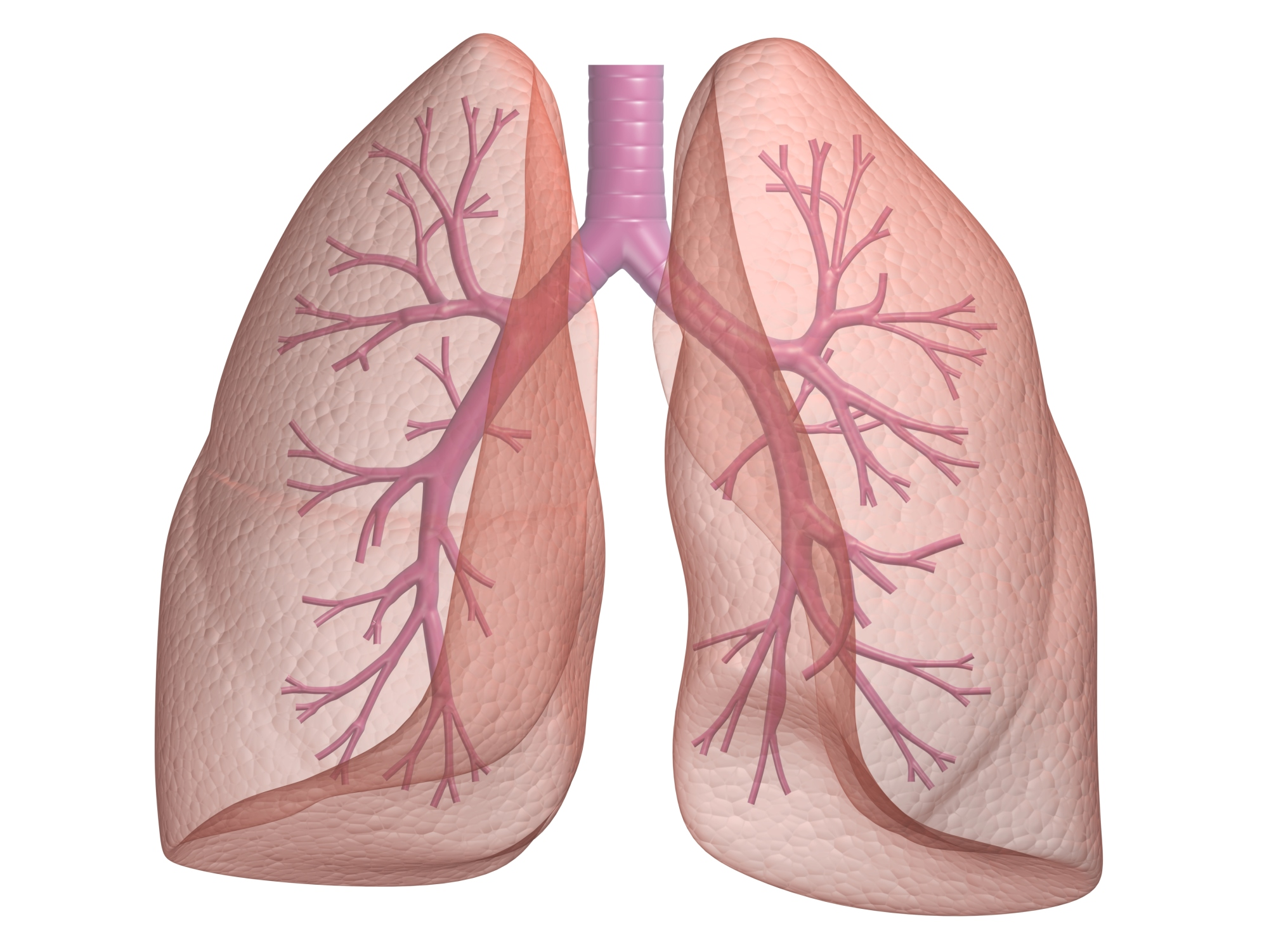 Simptomu-raka-legkogo