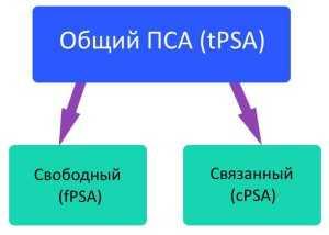 Типы ПСА