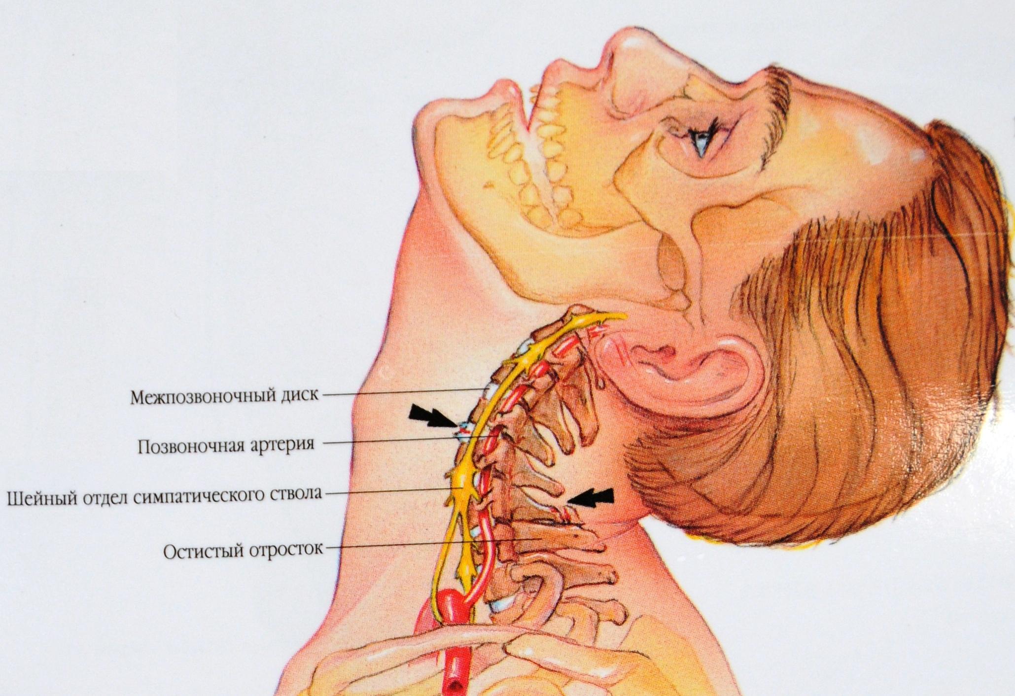 Тошнота боль внизу живота тянущая боль в пояснице головокружение