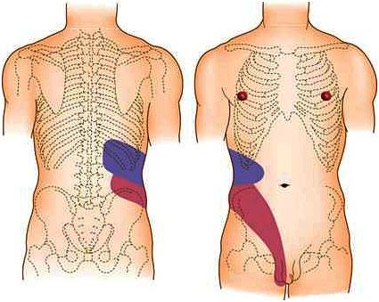 Тренировки при лечении спины
