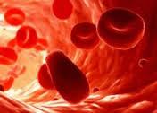 Причины и симптомы внутренних кровотечений