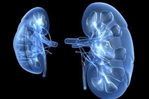 Что такое гломерулонефрит - причины, симптомы и последствия