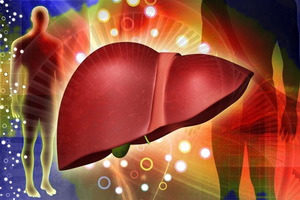 Все виды и формы гепатита, их признаки и симптомы – как вовремя распознать гепатит?