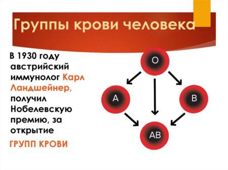 Анализ на группу крови и резус-фактор