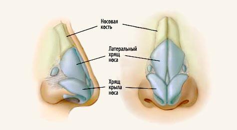 rinoplastika