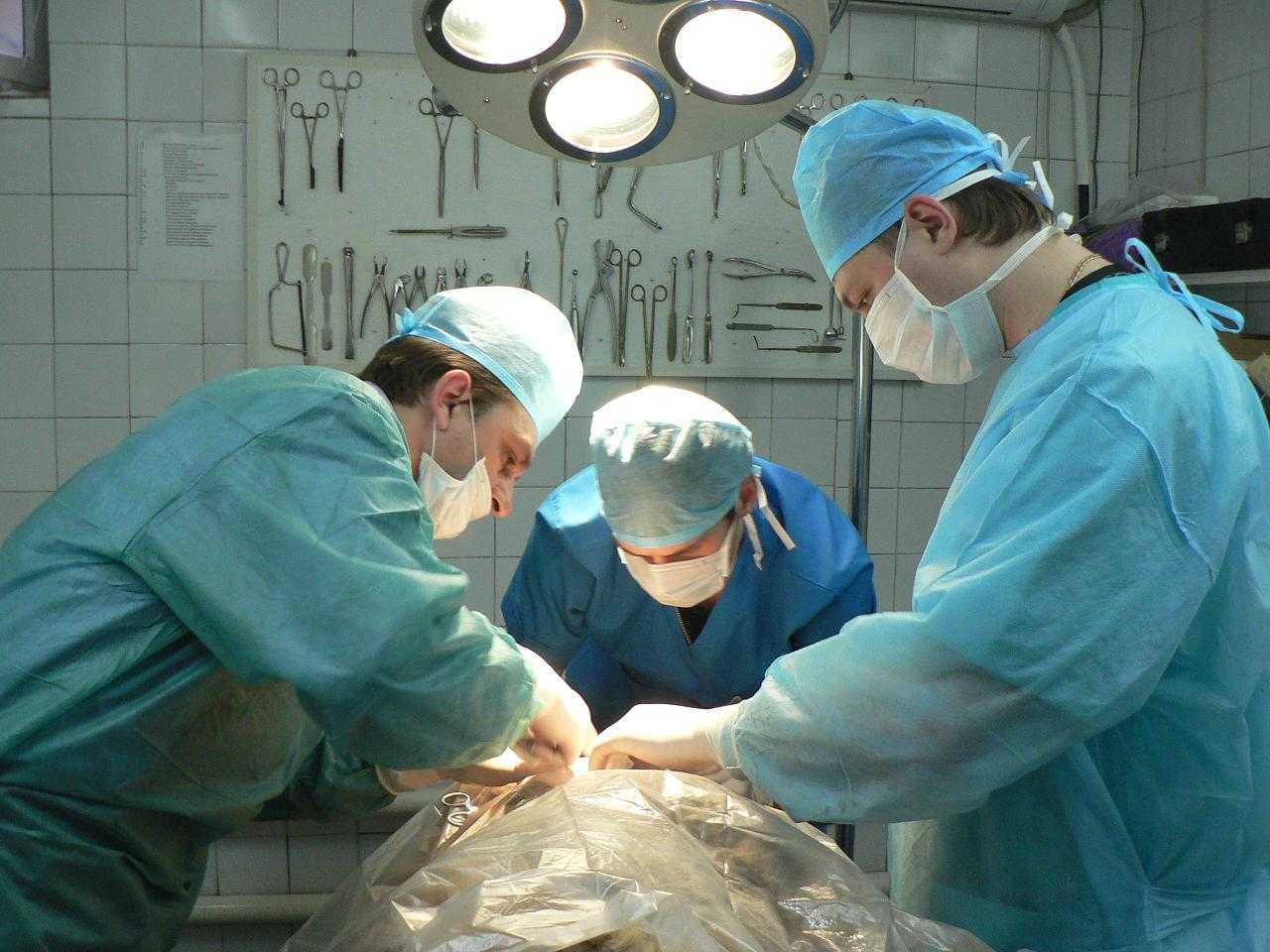 Специализация по хирургии