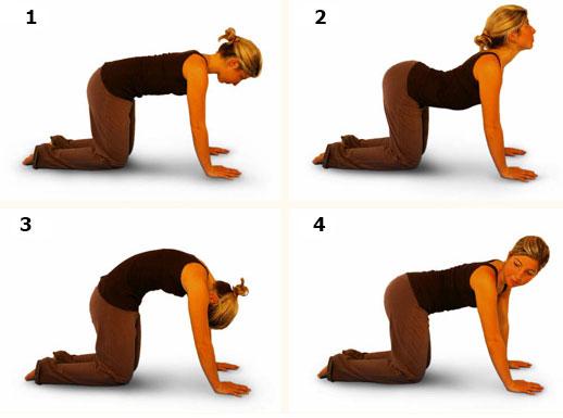 Упражнения на четвереньках в лечении спаечной болезни брюшной полости