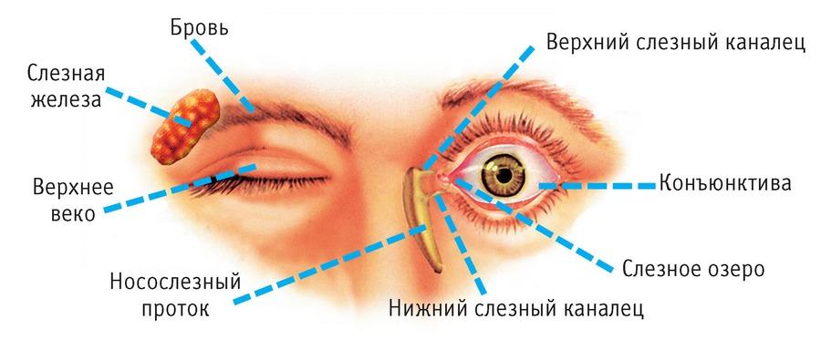 Синдром красных глаз