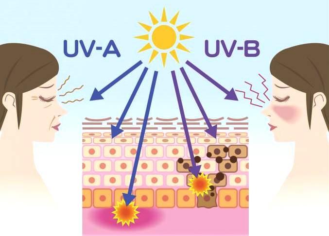 Мифы и правда о солнцезащитном креме